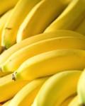yogis-bananas-slides-big